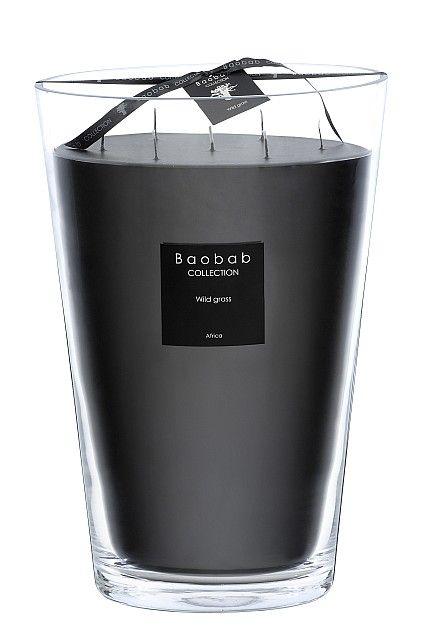 baobab duftkerze maxi max wild grass exklusive wohnaccessoires raumduft und duftkerzen. Black Bedroom Furniture Sets. Home Design Ideas